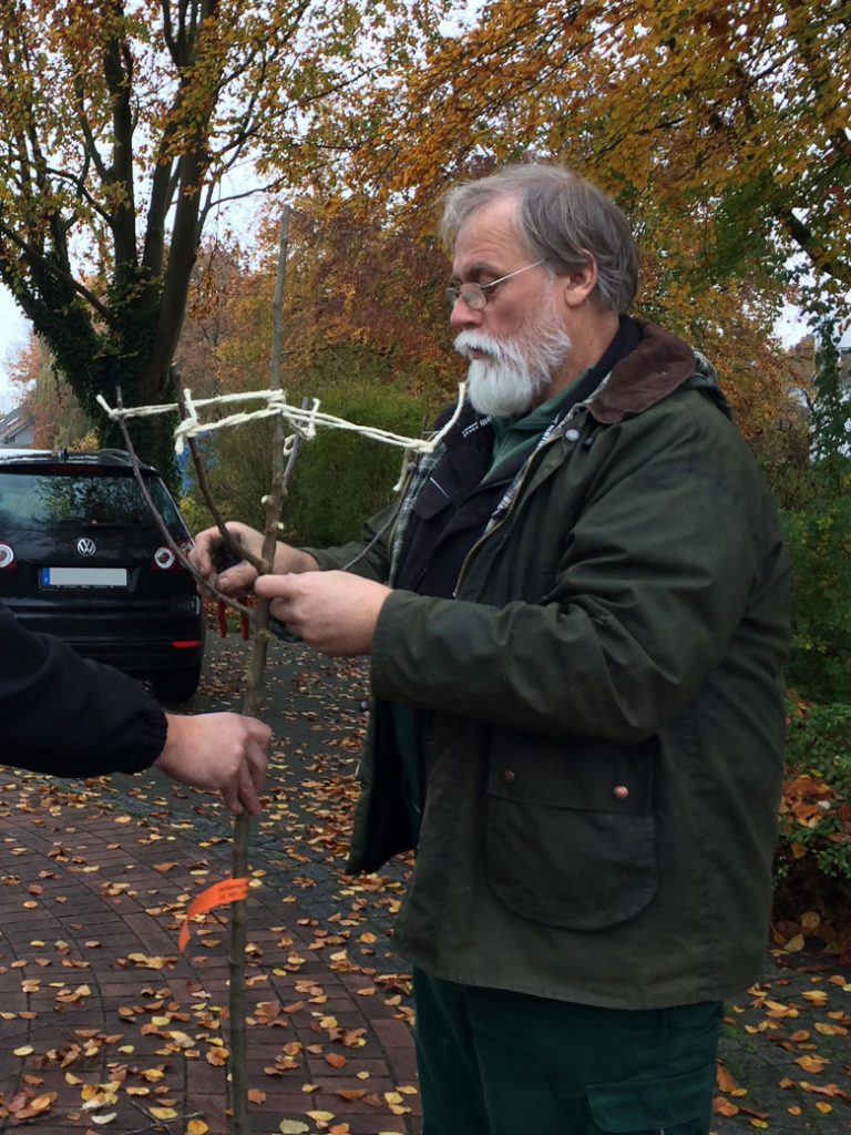 Rainer Bethehem beschneidet einen Apfelbaum