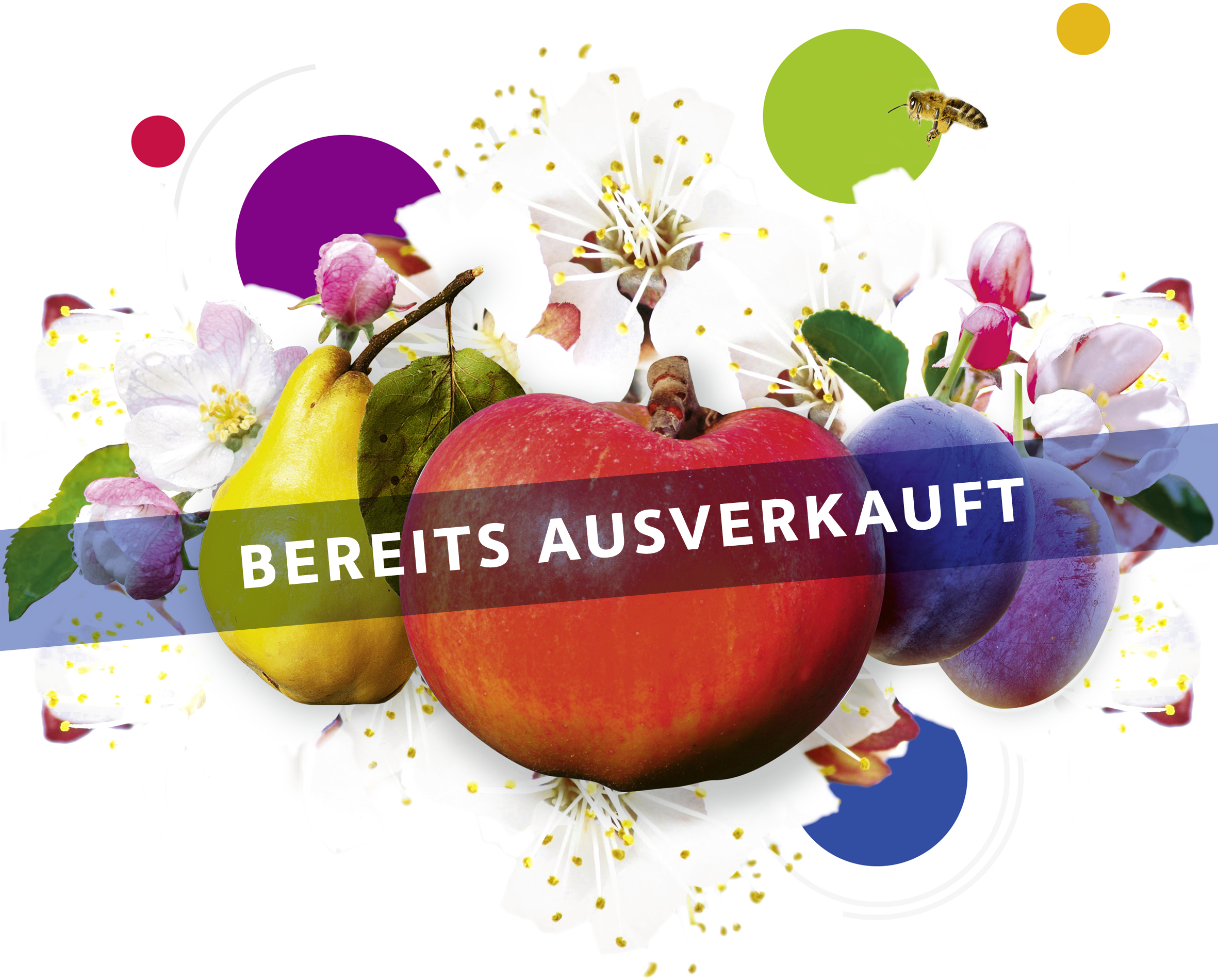 Ausverkauft: 50 Obstbäume für Rheda-Wiedenbrück